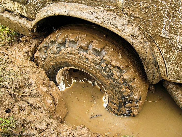 В поисках трактора: главное правило при выезде на бездорожье