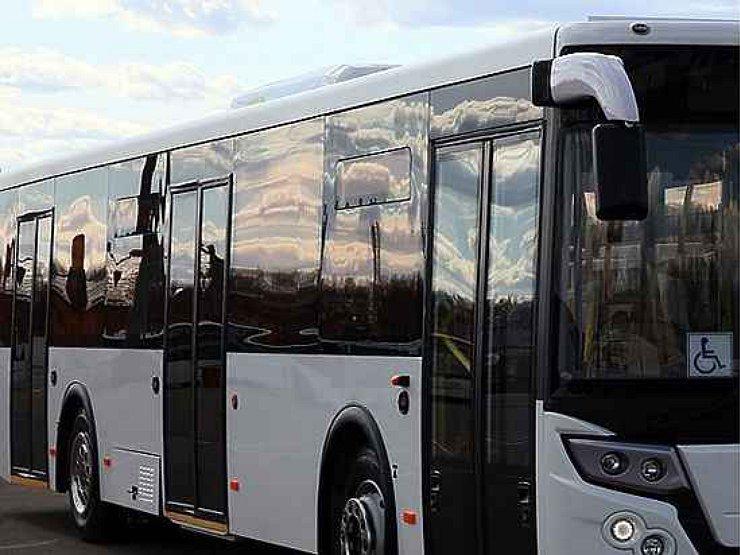 Высшем уровне, член стоит в автобусе фото