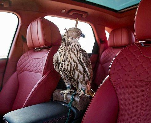 Mulliner выпустил Bentley Bentayga для соколиной охоты
