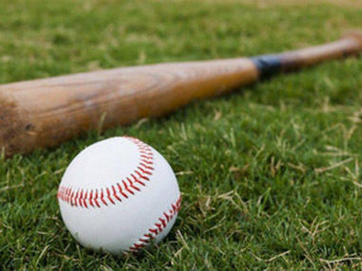 Можно ли возить в машине бейсбольную биту?